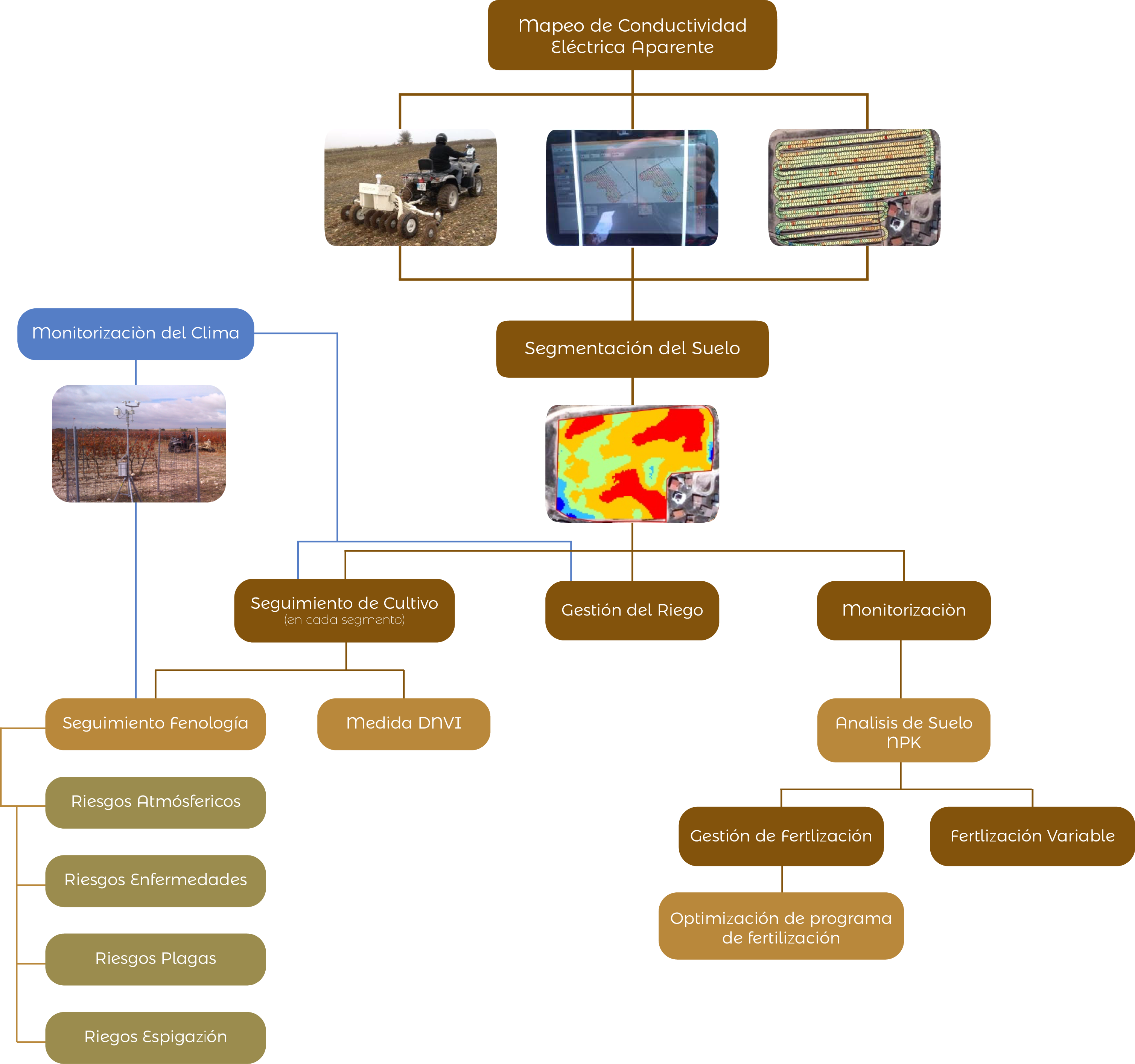 Agricultura-de-Precisión-Cultivos-Hortícolas
