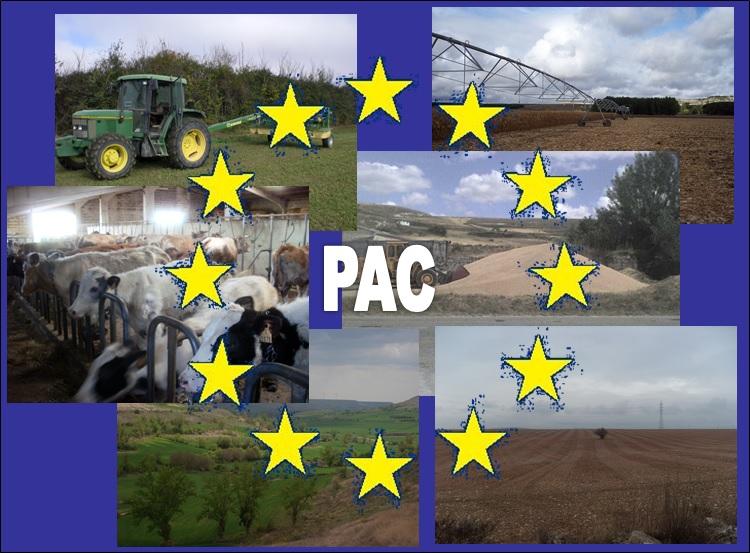 Resultado de imagen de politica agraria comun