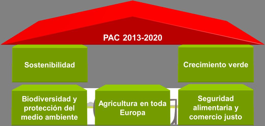 Figura 1. Cinco bases de la PAC 2013-2020.